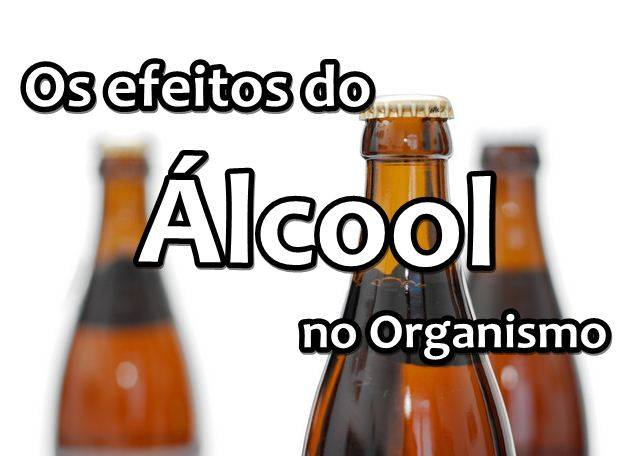 alcool-organismo